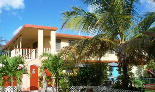 Wild Palm Guest House