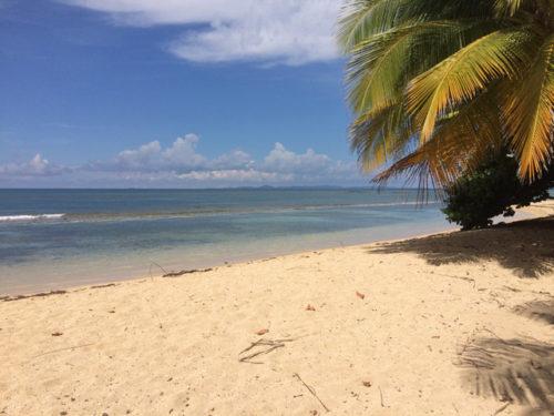feature-beach