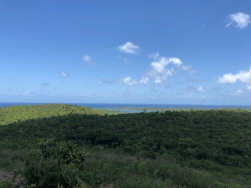 Captain's View !
